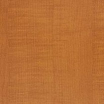 Swatch Huntington Maple