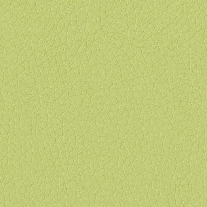 Swatch Apple Green