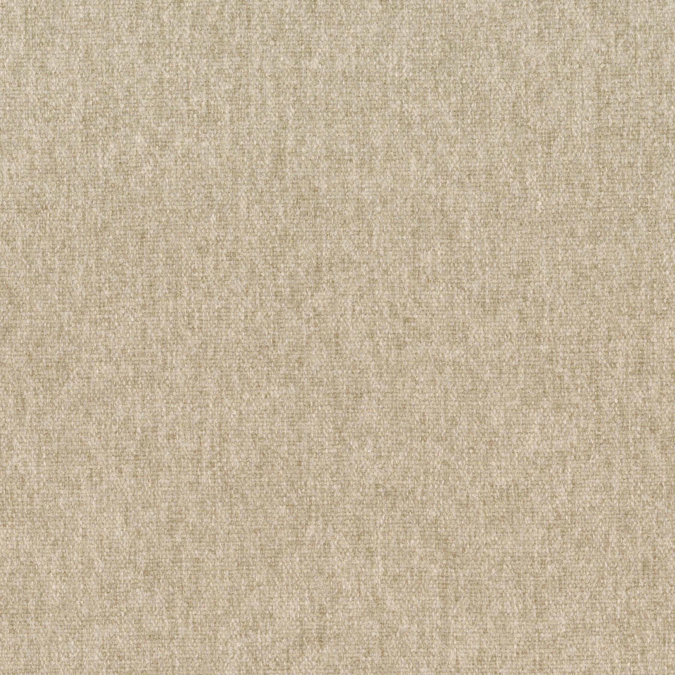 Swatch .Taupe