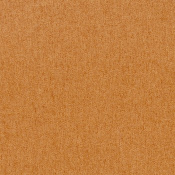 Swatch Copper.